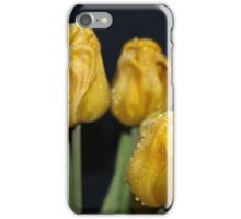 Dark yellow rain drop  tulips iPhone Case/Skin