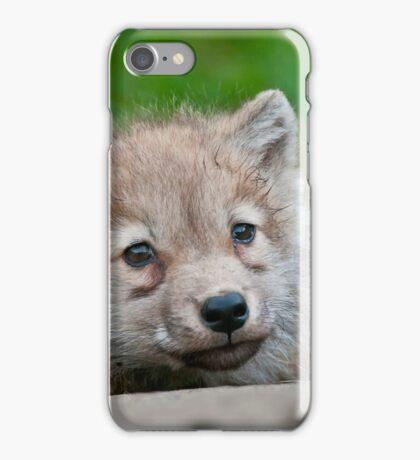 Arctic Wolf Pup iPhone Case/Skin