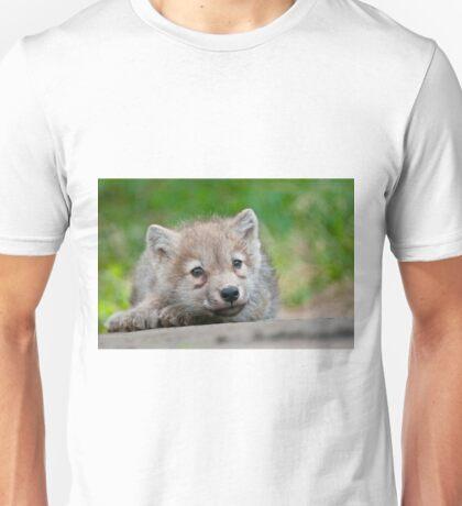 Arctic Wolf Pup Unisex T-Shirt