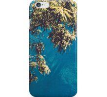Santa Monica Blue/Green iPhone Case/Skin