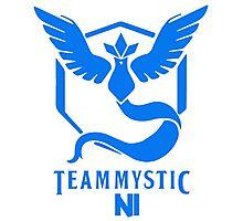 Pokemon Go Team Mystic NI Photographic Print