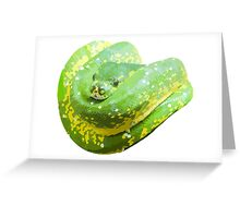 Snuggly Snake Greeting Card