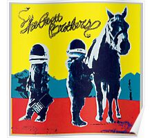 The avett brothers new album true madness Poster