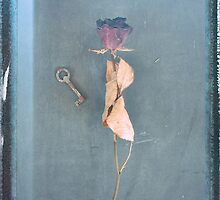 Trapped Rose by Anki Hoglund