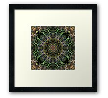 fractal abstract  Framed Print
