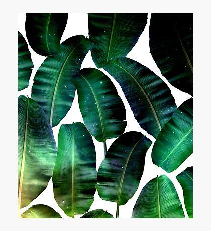 Cosmic Banana Leaves #redbubble #lifestyle Photographic Print