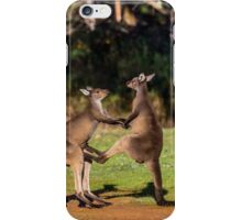 Fighting Kangaroos iPhone Case/Skin