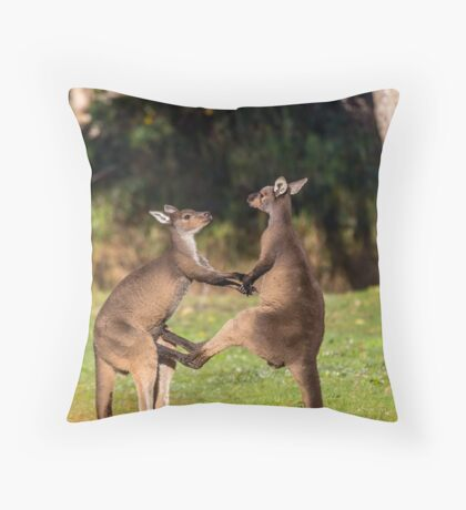 Fighting Kangaroos Throw Pillow