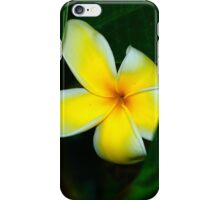 Plumeria In Hiding iPhone Case/Skin