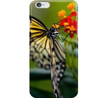 Butterfly Nectar iPhone Case/Skin