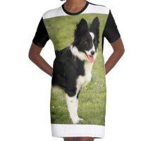 Border Collie Graphic T-Shirt Dress