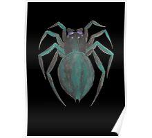 Die Spinne Poster