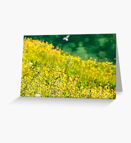 North East Coast - A View Greeting Card