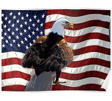 Bald Eagle and US Flag Poster