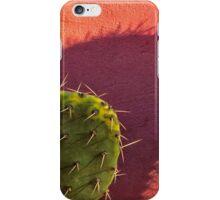 Colourful Cactus iPhone Case/Skin