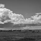 A Storm Rolls Into The Badlands by Thomas Young