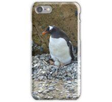 Nesting iPhone Case/Skin