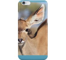 Kudu - African Wildlife Background - Innocence of Life iPhone Case/Skin