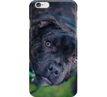 Cooper iPhone Case/Skin