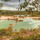 Tranquil Quarry by Michael Matthews