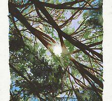 Sky by Rhys Burnie