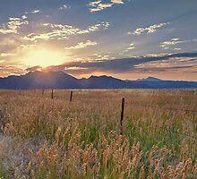 Broomfield Overlook by Jarrett720