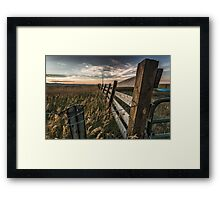 Playpen Framed Print