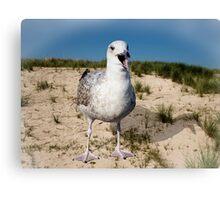 Seagulls Dune Canvas Print