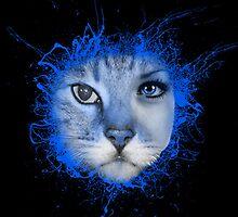 Meow by LemonDropReborn