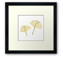 Gingko Leaves Framed Print