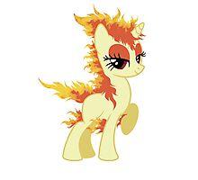 My little Pony(ta) Photographic Print