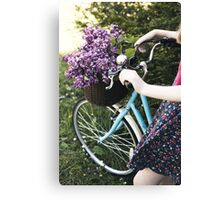 Collecting lilac Canvas Print
