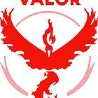 Valor Pokemon GO by shuu-sama