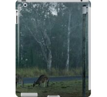 Early morning mist on the corner of Edinburgh Dr iPad Case/Skin