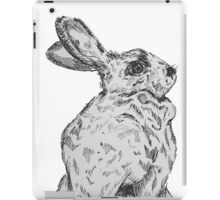 Beatrix Potter Inspired Inked Bun iPad Case/Skin