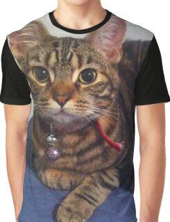 Pretty kitty Graphic T-Shirt