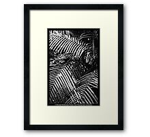 Pure Thomacheat #4. MONOCHROME. Framed Print