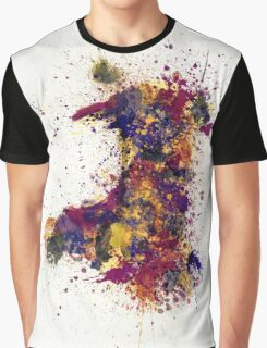 Wales Paint Splashes Map Graphic T-Shirt