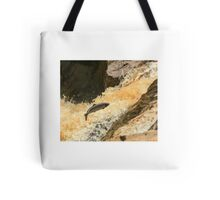 salmon leap clohan co donegal ireland Tote Bag