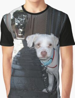 Alley Dog Graphic T-Shirt