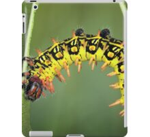 Balancing act iPad Case/Skin