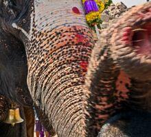 Elephant Blessing. Sticker