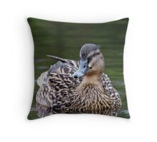 Female Mallard  Throw Pillow