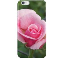 Pink rose and wire fence iPhone Case/Skin