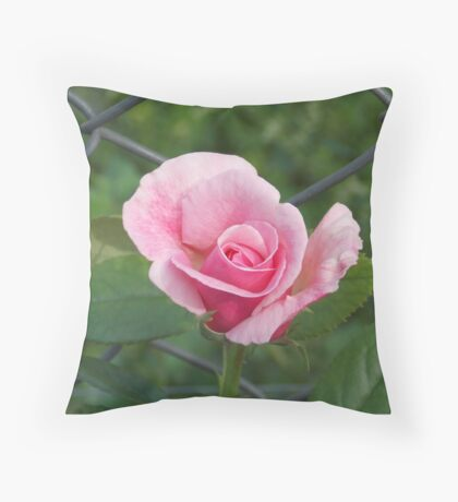 Pink rose and wire fence Throw Pillow