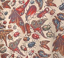 Vintage Insects by lemurnade