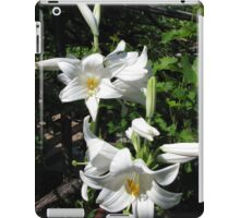 Madonna Lilies (Lilium candidum) - iPad/iPod/iPhone/Samsung cases iPad Case/Skin