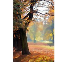 Autumn Park Photographic Print
