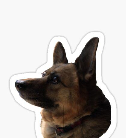 Dog's Head Sticker
