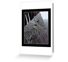 Focal point#3 Greeting Card